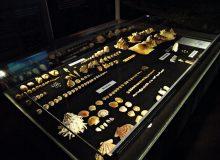 Musée des coquillages